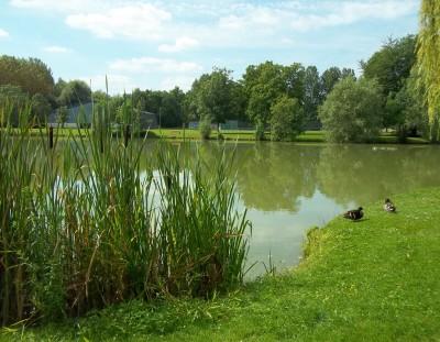 Le Camping de l'Aigrette et l'environnement